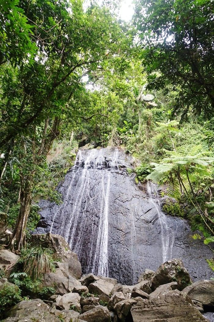 Puerto Rico (16)